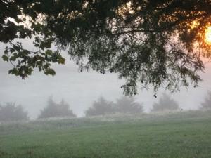 2008_10_10 - sunrise 004.JPG - PQ 30